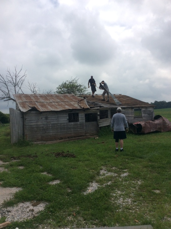 Michael, Adrian and my dad tearing down the pig barn.
